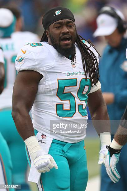 Dannell Ellerbe of the Miami Dolphins during NFL game action against the Buffalo Bills at Ralph Wilson Stadium on December 22 2013 in Orchard Park...