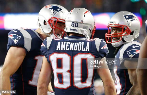 Danny Amendola of the New England Patriots reacts with teammates in the second half during the AFC Championship Game against the Jacksonville Jaguars...