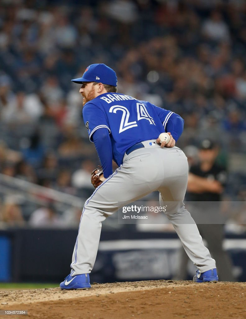 Danny Barnes #24 of the Toronto Blue Jays in action against the New York Yankees at Yankee Stadium on September 15, 2018 in the Bronx borough of New York City. The Blue Jays defeated the Yankees 8-7.