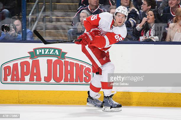Danny DeKeyser of the Detroit Red Wings skates against the Columbus Blue Jackets on March 11 2014 at Nationwide Arena in Columbus Ohio Columbus...
