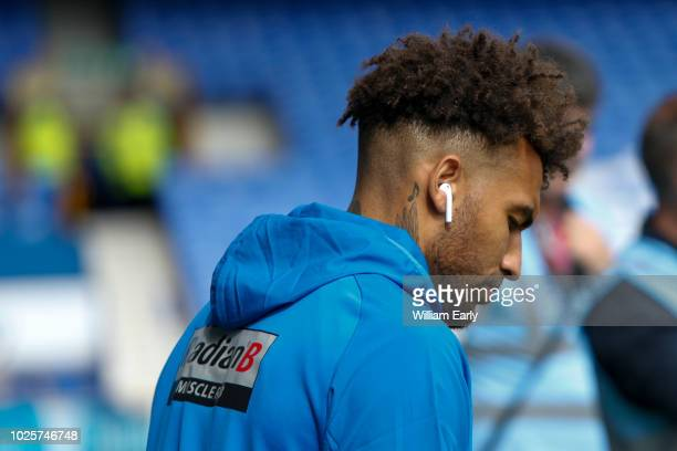 Danny Williams of Huddersfield Town during the Premier League match between Everton FC and Huddersfield Town at Goodison Park on September 1, 2018 in...
