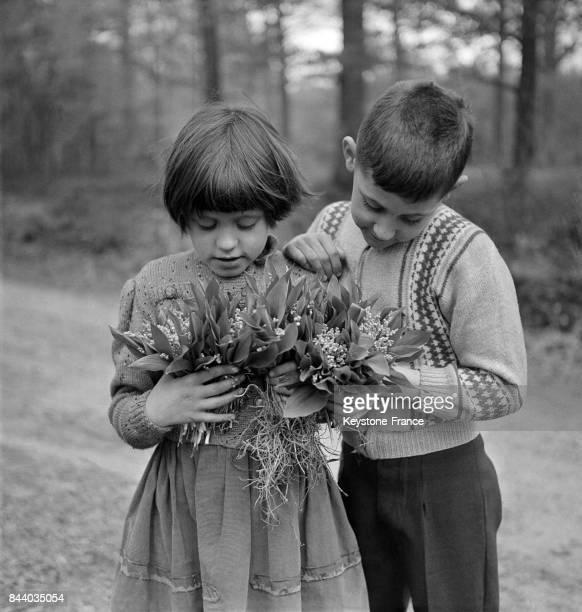 Dans le boisd e VauxdeCernay en Seine et Oise ces enfants ont cueillis le muguet dont ils admirent les brins fleuris en France le 29 avril 1960