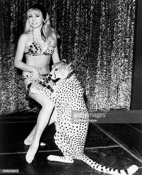 Danseuse qui a mis au point dans un cabaret de Soho un numéro de danse dans lequel elle est déshabillée par un Guépard à Londres RoyaumeUni le 8...