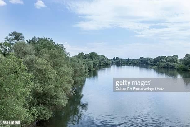 Danube Meadows near Neustadt, Bavaria, Germany