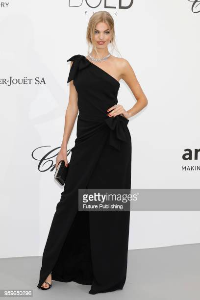 Daphne Groenveld at the amfAR 25th Annual Cinema Against AIDS gala at the Hotel du CapEdenRoc in Cap d'Antibes France during the 71st Cannes Film...