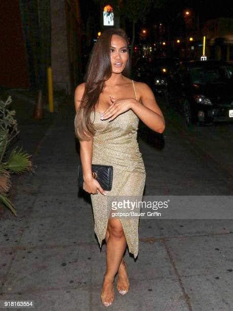 Daphne Joy is seen on February 14 2018 in Los Angeles California