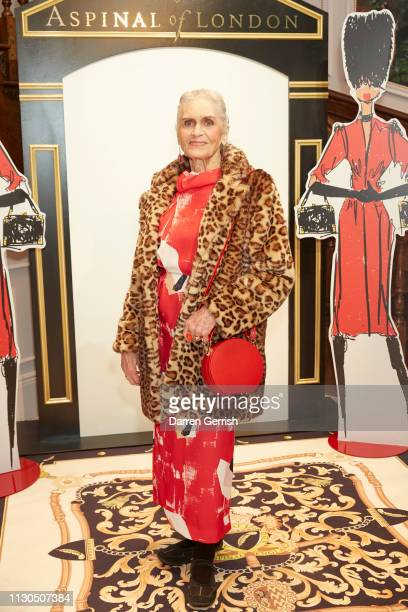 Daphne Self wearing the Mini Hat Box Bag in Scarlet Saffiano attends the Aspinal of London AW19 presentation during London Fashion Week February 2019...