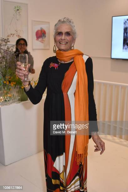 Daphne Selfe attends a private view of '100 Women' an exhibition of fashion illustration to celebrate the centenary of women's suffrage at SHOWstudio...
