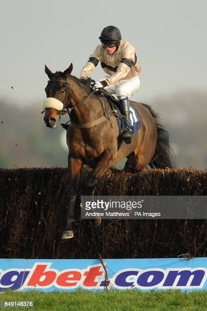 Darceys Dancer ridden by jockey Conor Ring jumps during the Sanderson Weatherall Ladies Are Ageless Conditional Jockeys' Handicap Chase during the...