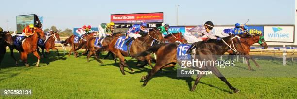 Darci's Money ridden by Jessica Eaton wins the Financial Momentum 0 58 Handicap on March 03 2018 in Wangaratta Australia