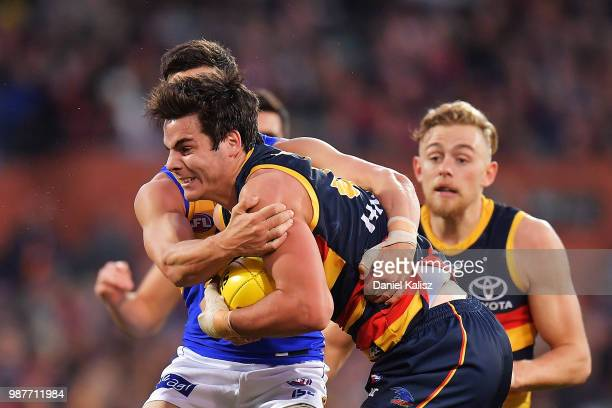 Darcy Fogarty of the Crows competes for the ball during the round 15 AFL match between the Adelaide Crows and the West Coast Eagles at Adelaide Oval...
