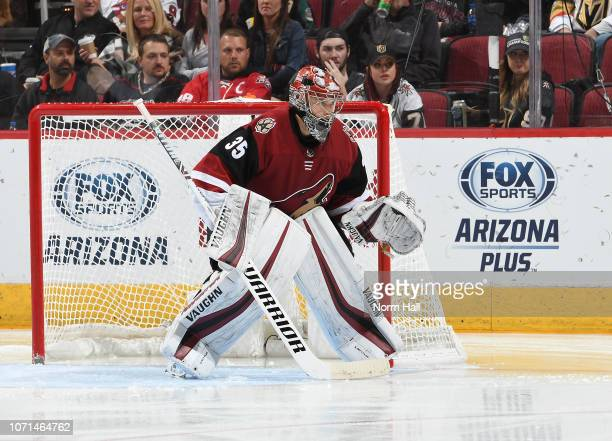 Darcy Kuemper of the Arizona Coyotes gets ready to make a save against the Vegas Golden Knights at Gila River Arena on November 21 2018 in Glendale...