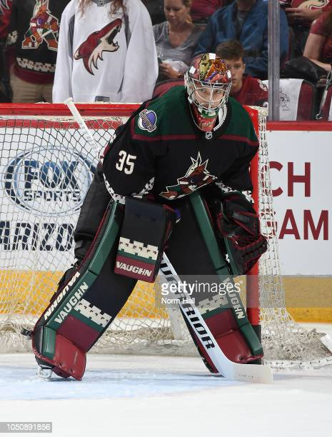 Darcy Kuemper of the Arizona Coyotes prepares for a game against the Anaheim Ducks at Gila River Arena on October 6 2018 in Glendale Arizona