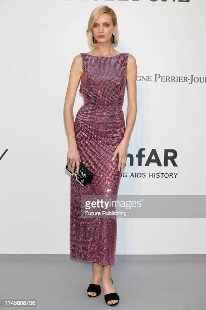 Daria Strokous at the amfAR Cannes Gala 2019 at Hotel du CapEdenRoc on May 23 2019 in Cap d'Antibes France