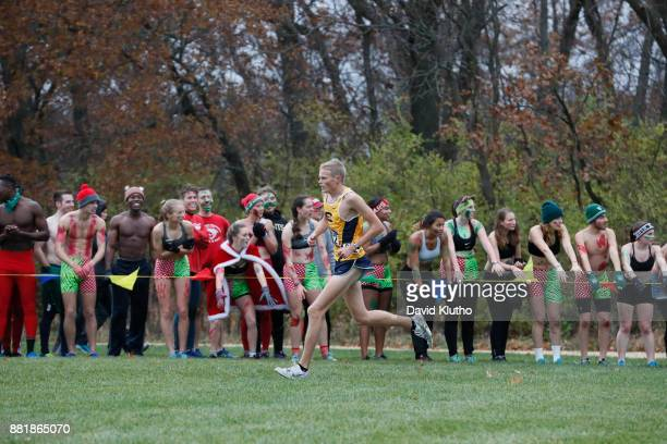 Darin Lau of the University of Wisconsin EauClaire wins the national championship during the Division III Men's and Women's NCAA Cross Country...