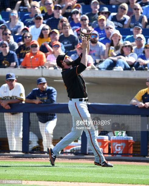Darin Ruf of the San Francisco Giants catches a pop foul against the Milwaukee Brewers during a spring training game at American Family Fields of...