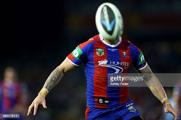 Darius Boyd of the Knights chases the ball during the round seven NRL match between the Newcastle Knights and the Brisbane Broncos at Hunter Stadium...