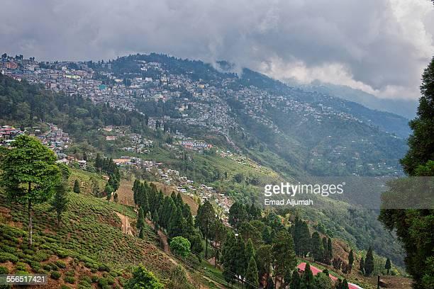 Darjeeling, the Queen of the Hills