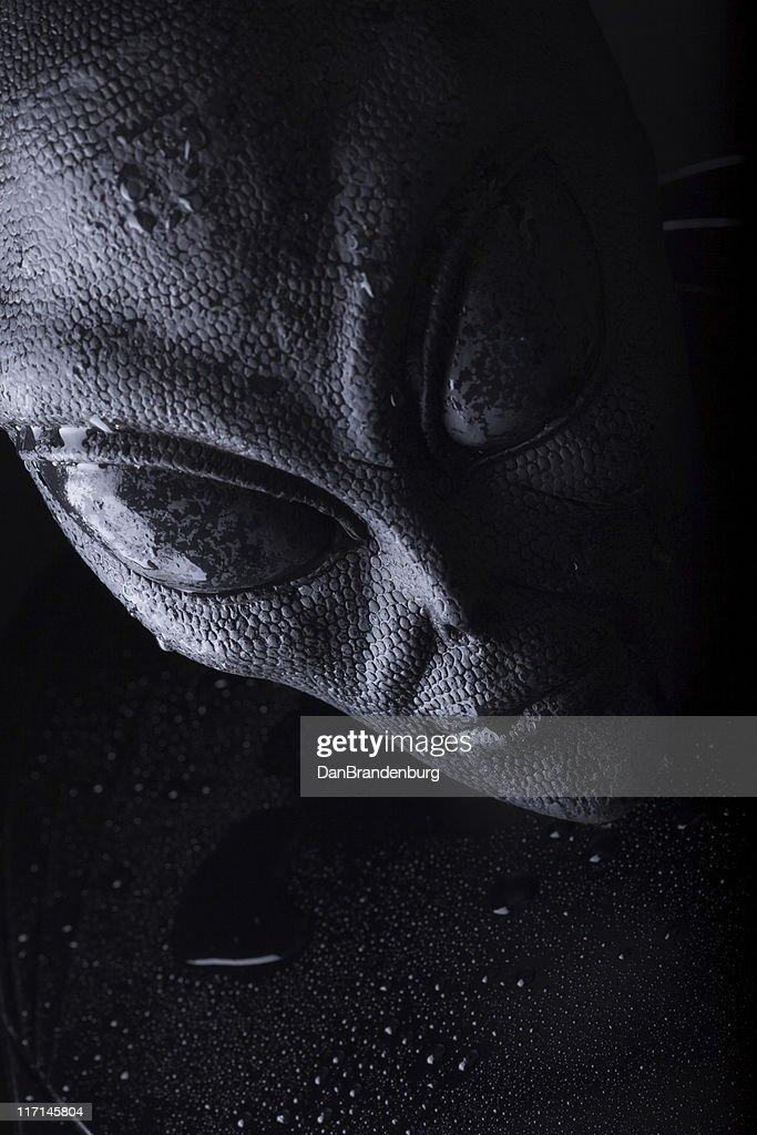 Dark Alien Creature : Stock Photo