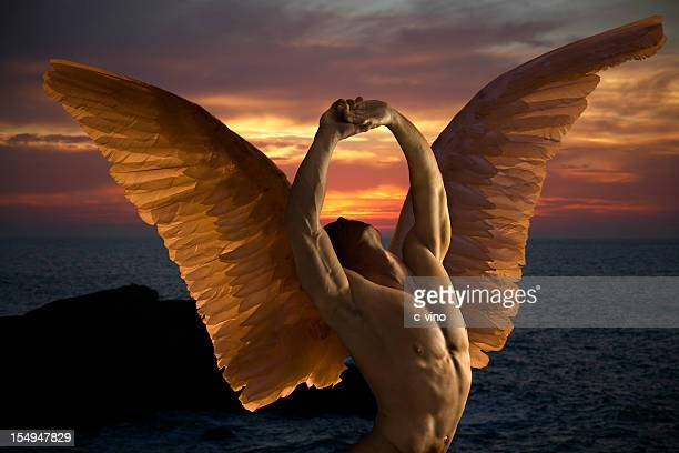 dark angel in sunset - male angel stock photos and pictures