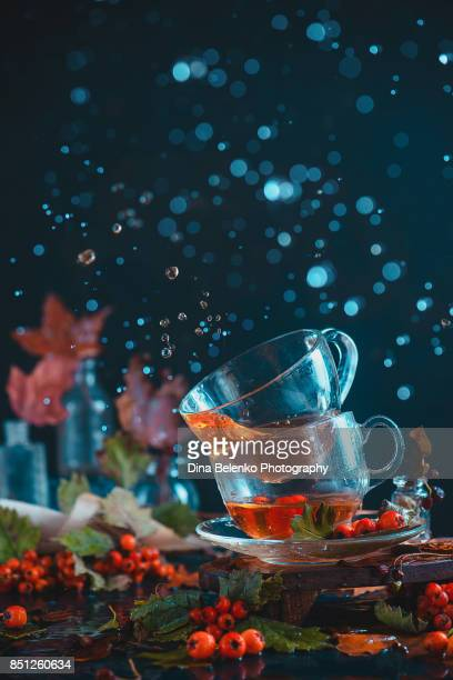 Dark autumn still life with a pair of teacups, leaves, berries and cinnamon on a wet background. Action photography with water drops.