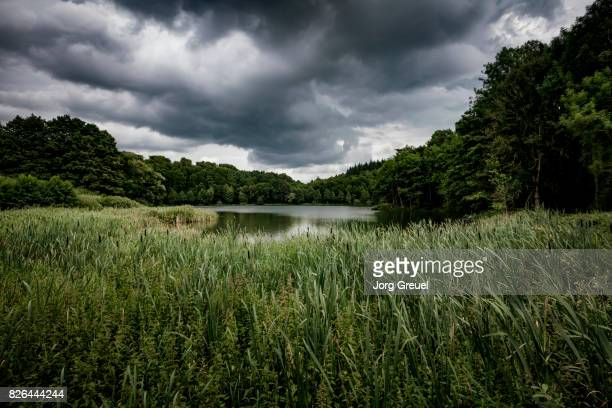 Dark clouds over Holzmaar