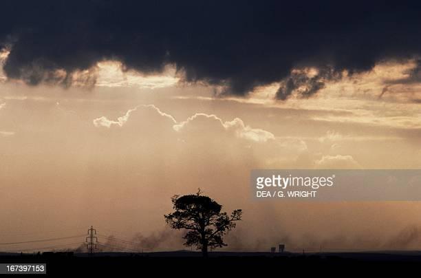 Dark clouds over the Sherwood Forest Nottinghamshire England United Kingdom