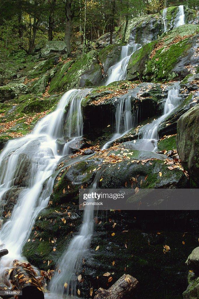 Dark Hollow Falls , Shenandoah National Park , Virginia : Stockfoto