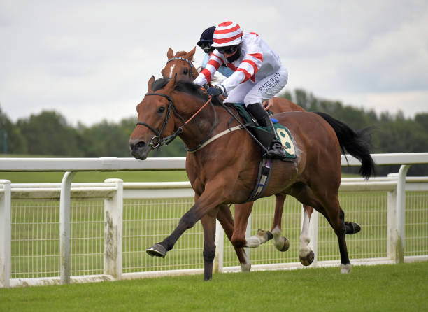 GBR: Ripon Races