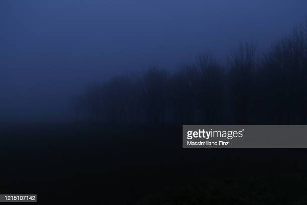 dark spooky landscape, night scene - overcast stock pictures, royalty-free photos & images
