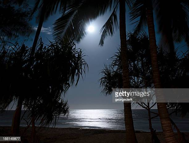 Dark Tropical Beach with Moonlight