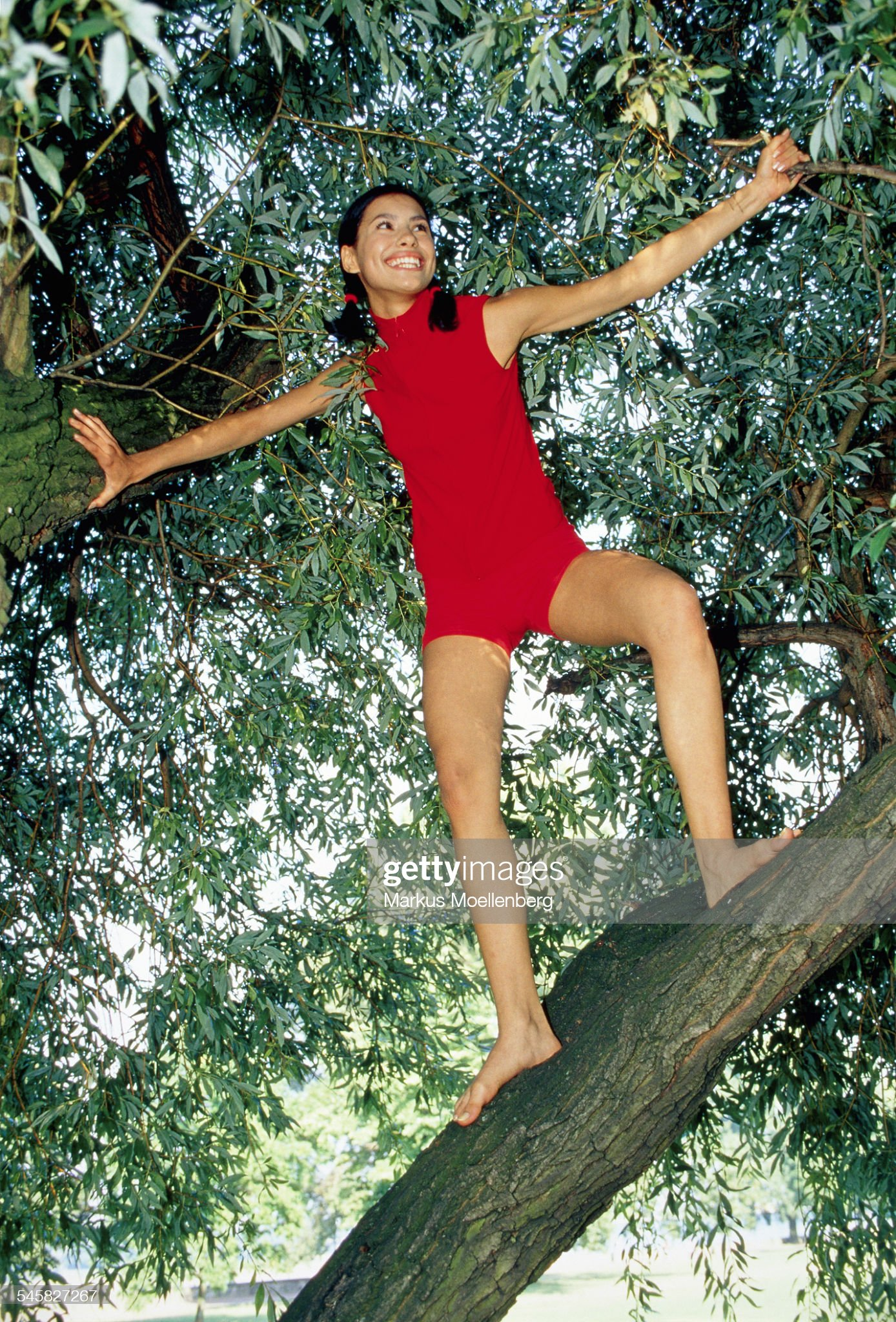 https://media.gettyimages.com/photos/darkhaired-young-woman-with-pigtails-balacing-on-a-tree-picture-id545827267?s=2048x2048