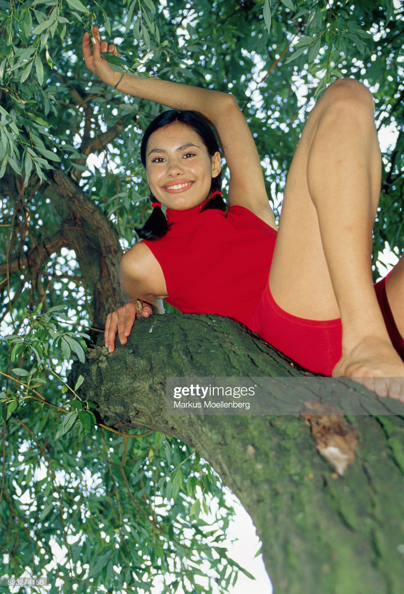 https://media.gettyimages.com/photos/darkhaired-young-woman-with-pigtails-on-a-tree-picture-id523274158?s=2048x2048