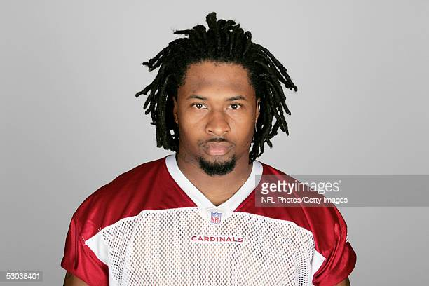 Darnell Dockett of the Arizona Cardinals poses for his 2005 NFL headshot at photo day in Tempe Arizona