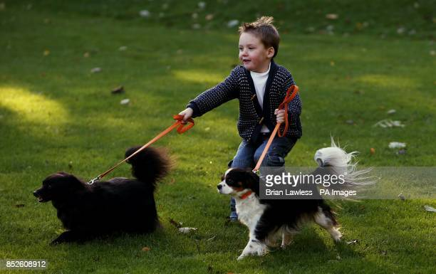 Darragh Butterly from Drogheda with pomcollie cross MJ and cavalier king charles Ruby in Merrion Square Park Dublin at the launch of Dublin City...