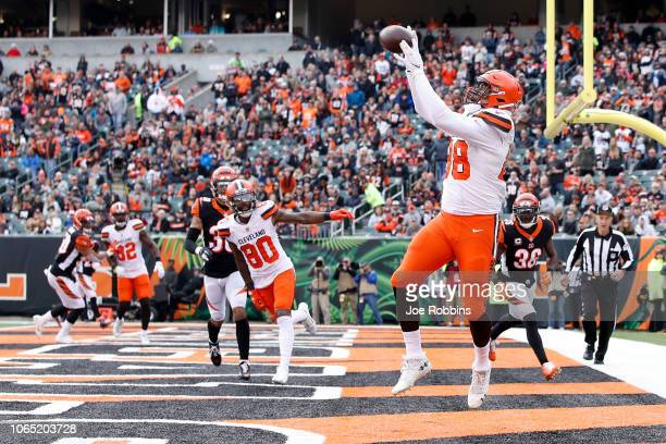 Darren Fells of the Cleveland Browns catches a pass for a touchdown during the third quarter of the game against the Cincinnati Bengals at Paul Brown...
