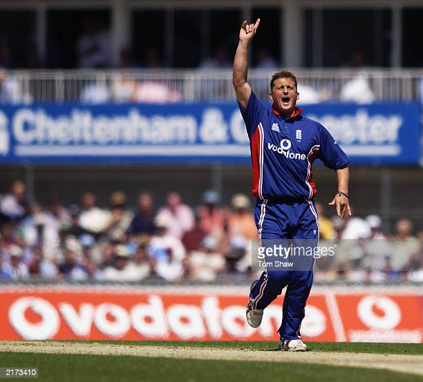 Darren Gough of England appeals for a wicket during the NatWest Challenge match between England and Pakistan on June 20 2003 at the AMP Oval in...