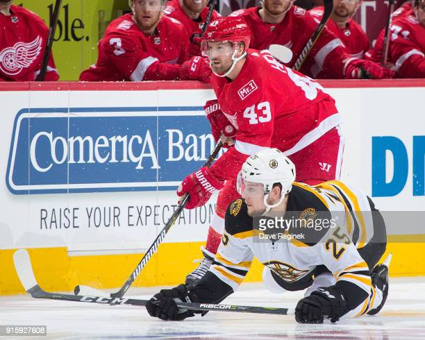 Darren Helm of the Detroit Red Wings battles along the boards with Brandon Carlo of the Boston Bruins during an NHL game at Little Caesars Arena on...