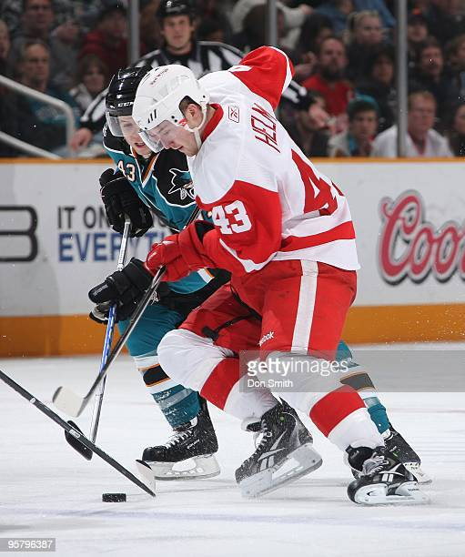 Darren Helm of the Detroit Red Wings battles for the puck with John McCarthy of the San Jose Sharks during an NHL game on January 9, 2010 at HP...