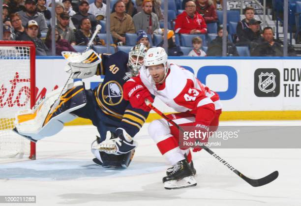 Darren Helm of the Detroit Red Wings is defended by Carter Hutton of the Buffalo Sabres during an NHL game on February 11 2020 at KeyBank Center in...