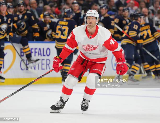 Darren Helm of the Detroit Red Wings looks for the puck during the first period against the Buffalo Sabres at KeyBank Center on February 11 2020 in...