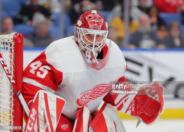 Darren Helm of the Detroit Red Wings looks for the puck during the second period against the Buffalo Sabres at KeyBank Center on February 11 2020 in...