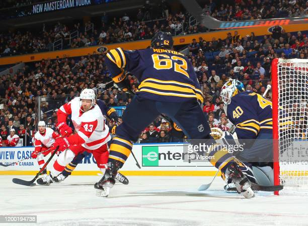 Darren Helm of the Detroit Red Wings scores a second period goal against Carter Hutton of the Buffalo Sabres during an NHL game on February 11 2020...
