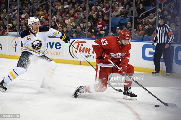 Darren Helm of the Detroit Red Wings skates with the puck during the game against the Detroit Red Wings on Friday January 22 2016 at the First...
