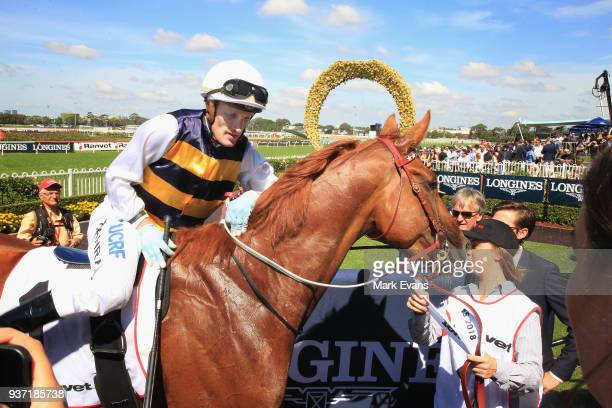 Darren Weir on Gailo Chop retuns to scale afte winning race 4 The Ranvet Stakes during Golden Slipper Day at Rosehill Gardens on March 24 2018 in...