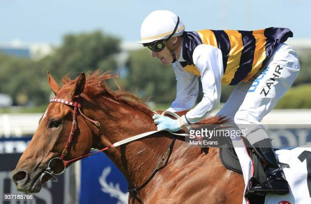 Darren Weir on Gailo Chop wins race 4 The Ranvet Stakes during Golden Slipper Day at Rosehill Gardens on March 24 2018 in Sydney Australia