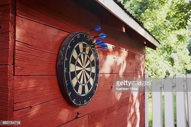 Dartboard hanging on shed, darts in board