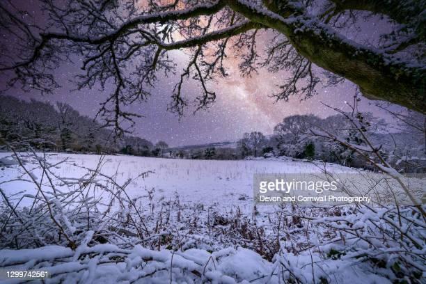 dartmoor national park - イングランド南西部 ストックフォトと画像