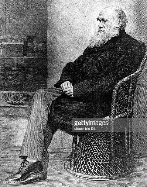 Darwin Charles Naturwissenschaftler GB Begruender der Evolutionstheorie Zeichnung undatiert