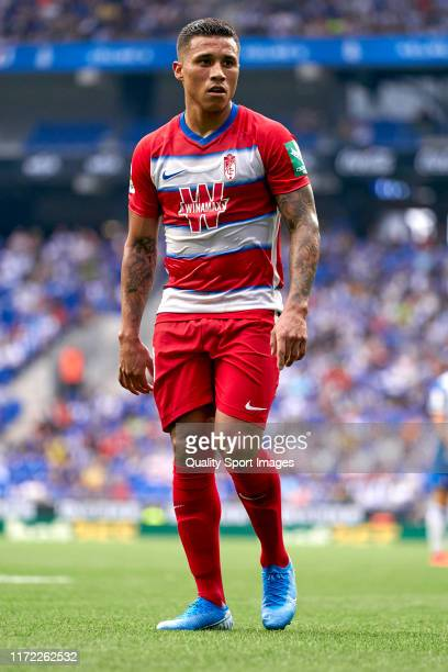 Darwin Machis of Granada CF during the Liga match between RCD Espanyol and Granada CF at RCDE Stadium on September 01, 2019 in Barcelona, Spain.